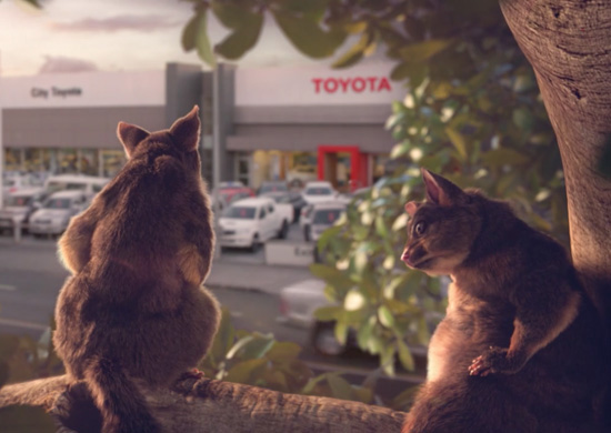 Toyota NZ Road Experts